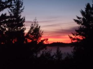 View from my back door.